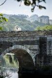 Cavalo branco que anda em uma ponte romana antiga sobre um rio em Lugo, Espanha foto de stock