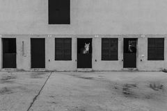 Cavalo branco que mostra a cabeça através de uma porta estável Imagem de Stock