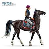 Cavalo com cavaleiro Jóquei no cavalo Corrida de cavalos Mulher no cavalo esporte Ilustração do vetor Foto de Stock Royalty Free