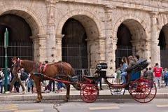 Cavalo com o carrinho na frente do colosseum Motorista t de espera imagem de stock