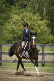 Cavalo da menina e da pintura que cantering Foto de Stock