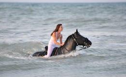 Cavalo da natação fotos de stock