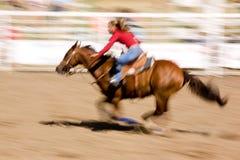 Cavalo da velocidade Fotografia de Stock Royalty Free