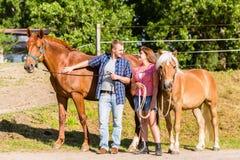 Cavalo das trocas de carícias dos pares no estábulo Fotos de Stock Royalty Free
