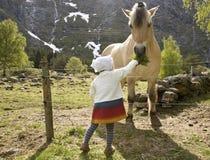Cavalo de alimentação da menina Imagens de Stock Royalty Free