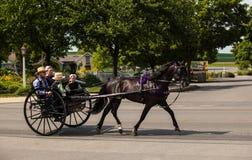 Cavalo de Amish & carrinho da Dois-roda imagem de stock