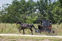 Cavalo de Amish e carrinho preto imagens de stock royalty free