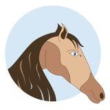 Cavalo de baía no círculo azul - vector o emblema Foto de Stock
