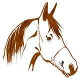 Cavalo de Brown ilustração royalty free
