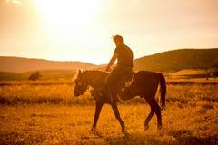 Cavalo de equitação do homem no por do sol fotos de stock royalty free