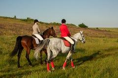 Cavalo de equitação de duas jovens mulheres no parque Caminhada do cavalo no verão fotos de stock royalty free