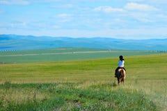 Cavalo de equitação na pastagem imagens de stock royalty free