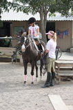 Cavalo de equitação da menina Foto de Stock