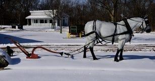 Cavalo de esboço de Percheron da fibra de vidro imagens de stock royalty free