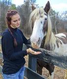 Cavalo de oferecimento da menina um deleite Foto de Stock Royalty Free