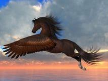 Cavalo de Pegasus da baía Fotos de Stock Royalty Free