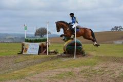 Cavalo de salto de Eventing do corta-mato gêmeo do rancho dos rios fotografia de stock royalty free