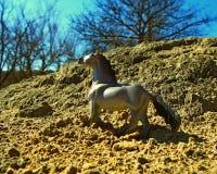 Cavalo do brinquedo Foto de Stock Royalty Free