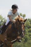 Cavalo do salto - raça equestre Imagem de Stock