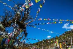 Cavalo do vento, Longta budista butanês, bandeiras da oração, Butão fotos de stock royalty free