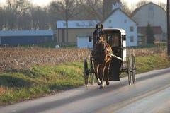 Cavalo e buggy de Amish fotografia de stock