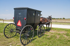 Cavalo e buggy de Amish imagem de stock royalty free