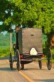 Cavalo e buggy de Amish imagens de stock