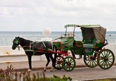 Cavalo e Buggy verde pelo mar fotografia de stock royalty free