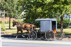 Cavalo e carrinho de Amish em Sunny Summer Day imagem de stock