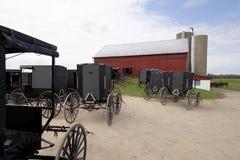 Cavalo e carrinho de Amish, engatados imagem de stock