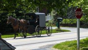 Cavalo e carrinho de Amish que vão abaixo da estrada imagens de stock royalty free