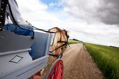 Cavalo e carro fotografia de stock