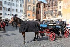 Cavalo e carro em Roma Imagem de Stock