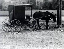 Cavalo e carro rústicos Fotos de Stock Royalty Free