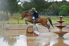 Cavalo e cavaleiro de Eventing Foto de Stock Royalty Free