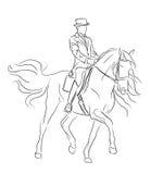 Cavalo e cavaleiro do Dressage Fotografia de Stock Royalty Free