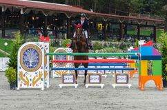 Cavalo e cavaleiro na mostra que salta no evento equestre fotos de stock