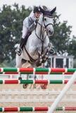 Cavalo e cavaleiro que saltam sobre a porta na mostra do cavalo fotografia de stock royalty free