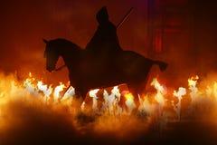 Cavalo e incêndio Foto de Stock Royalty Free