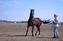 Cavalo e mulher Fotografia de Stock