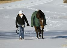 Cavalo e mulher na neve Foto de Stock Royalty Free