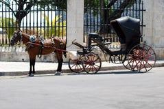 Cavalo e transporte, Havana velho, Cuba. Fotos de Stock