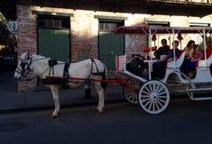 Cavalo e transporte na rua de Bourbon em Nova Orleães Louisiana Imagens de Stock