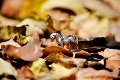 Cavalo em Autumn Leaves Imagem de Stock Royalty Free