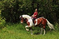 Cavalo em pelo de sorriso alegre do passeio da vaqueira Imagens de Stock Royalty Free