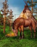 Cavalo em um acampamento Fotos de Stock