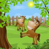 Cavalo engraçado na natureza Imagens de Stock Royalty Free