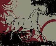 Cavalo livre Fotos de Stock