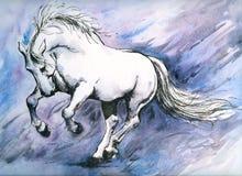 Cavalo louco ilustração royalty free