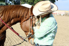 Cavalo Loving Foto de Stock